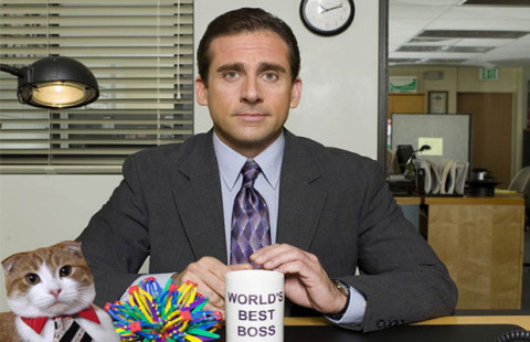 steve carell impressing your boss